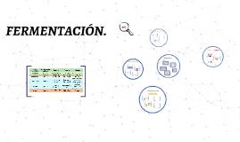 Copy of FERMENTACIÓN.