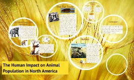 The Human Impact on Animal Population in North America