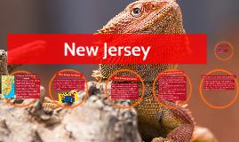 Paul New Jersey