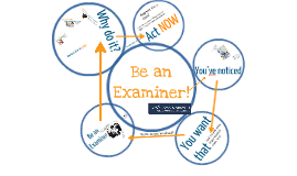RMPEx: Be an Examiner