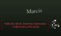 Fulls de càlcul, Sistemes Operatius i Informàtica Personal