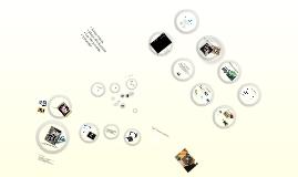 Digitala fotspår på nätet - SACO 2010