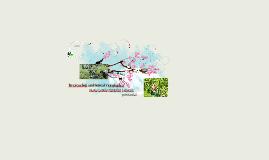 recreacion ambiental y ecologica