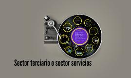 Sector terciario o sector servicios