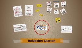 Proyecto SKarton 2015