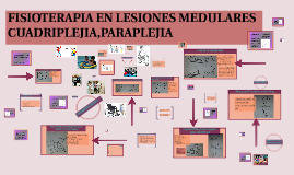 FISIOTERAPIA EN LESIONES MEDULARES CUADRIPLEJIA,PARAPLEJIA