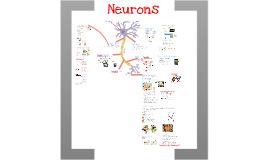 Nerve Transmissions