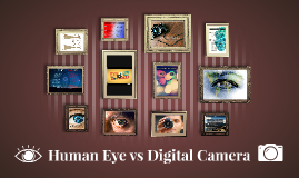 Human Eye vs Digital Camera