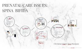 PRENATAL CARE ISSUES: Spina Bifida