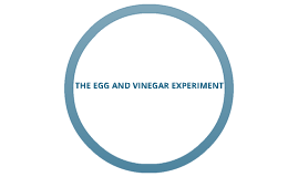 SCIENCE FAIR PROJECT: THE EGG AND Vinegar experiment