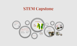 Copy of STEM Capstone