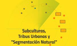 """Tribus Urbanas, Subculturas y """"Segmentación Natural"""""""