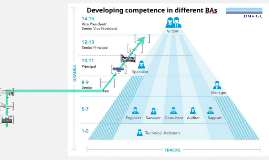 Developing competence in different BAs