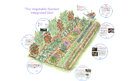 'The Vegetable Garden' Integrated Unit