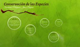Conservación de las Especies