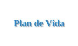 Copy of Plan de Vida de Rafael E. Urena para los proximos 5 años.
