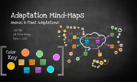 Copy of Adaptation Mind-Maps