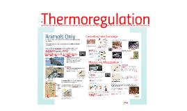 AP Bio- Energy 2: Thermoregulation