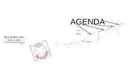 Plan de Mercadeo 2010