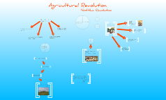 Agriculture/Neolithic Revolution