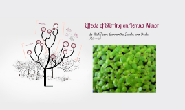 Effects of Stirring on Lemna Minor