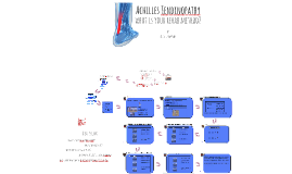 Achilles Tendonpathy