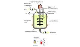Aula 3: Princípios em Tecnologia de Fermentações: Condições de processo