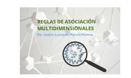 REGLAS DE ASOCIACIÓN MULTIDIMENSIONALES