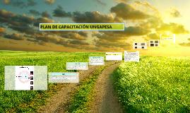 Proyecto capacitacion ungapesa