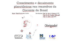 Growth and Decay of Plankton in the Brazil Current Meanders