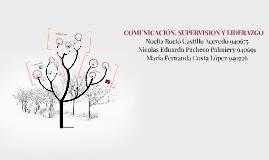 COMUNICACIÓN, SUPERVISION Y LIDERAZGO