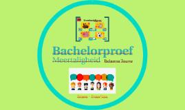 Bachelorproef - Frans