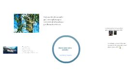 ecosistema samuel 3b