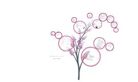 Community & Social Careers - Haley, Hannah