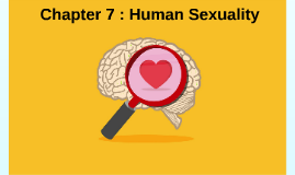 Chapter 7 : Human Sexuality
