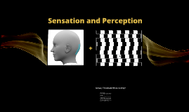 Sensation and Perception-what in the world is real?