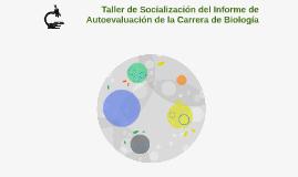 Taller de Socialización del Informe de Autoevaluación de la