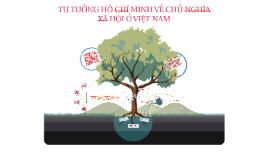 Tư tưởng HCM về CNXH