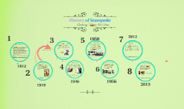 History of stampede