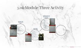 3.06 Module Three Activity