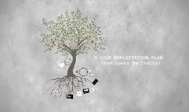 Copy of S-CASE Exploitation Plan