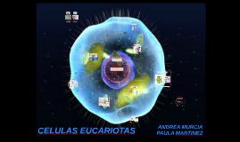 Copy of CELULAS EUCARIOTAS