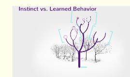 Copy of Instinct vs. Learned Behavior
