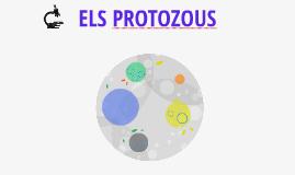ELS PROTOZOUS