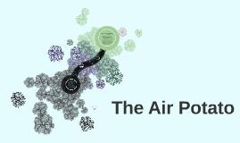 The Air Potato