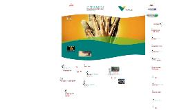 Plano CIPAMIN - VALE