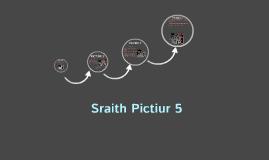 pictiur 1