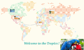 Welcome to the Tropics !