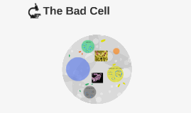 The Bad Cell