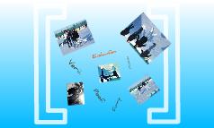 Eislaufen Zott